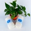 khan tay Jahoda JHH6 100% soi cotton mau kem