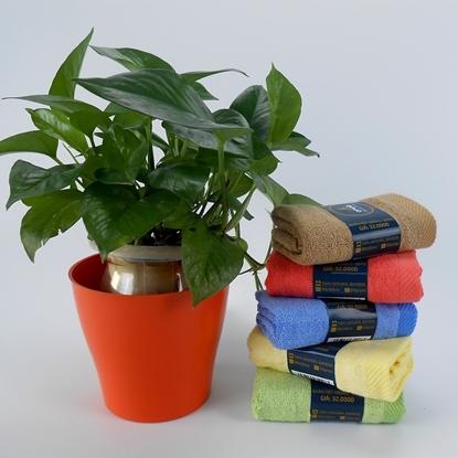 Combo 5 khăn mặt cao cấp Oriole