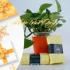 Công ty sản xuất khăn mặt quà tặng